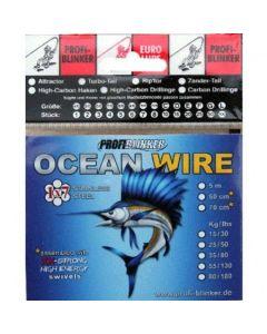 5m Ocean-Wire Stahlvorfächer - 25kg Tragkraft